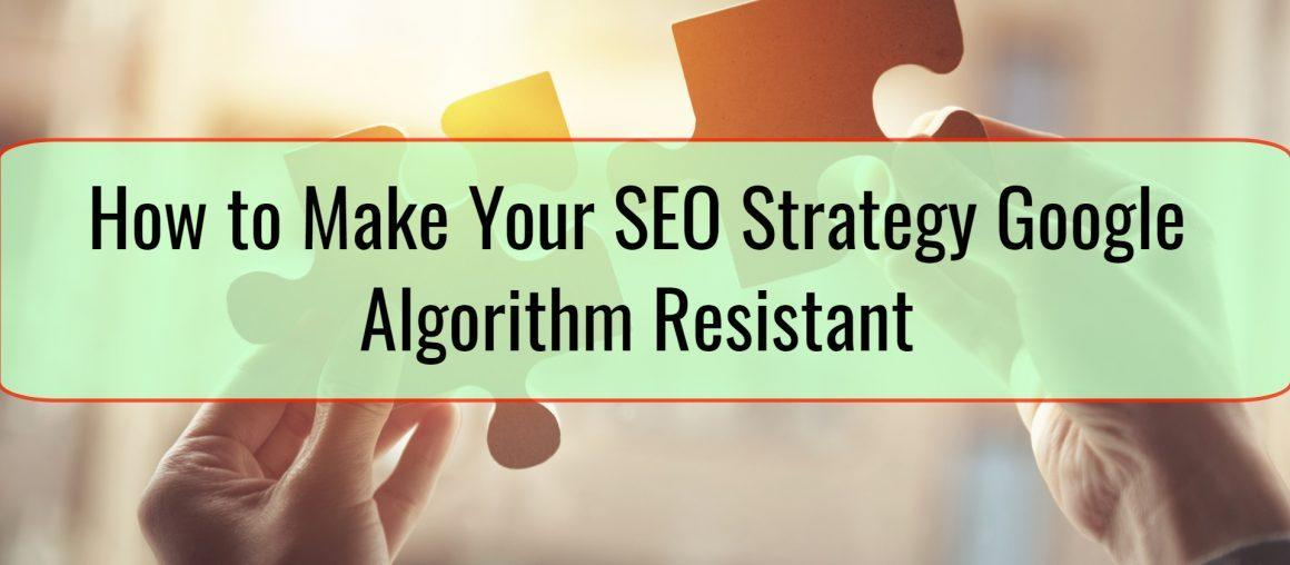 How to Make Your SEO Strategy Google Algorithm Resistant
