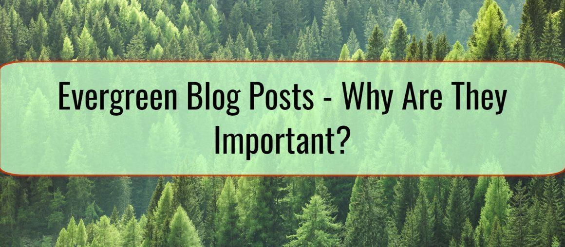 Evergreen Blog Posts - Why Are They Important?