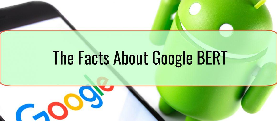 The Facts About Google BERT